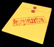 Reorganization_envelope_14100